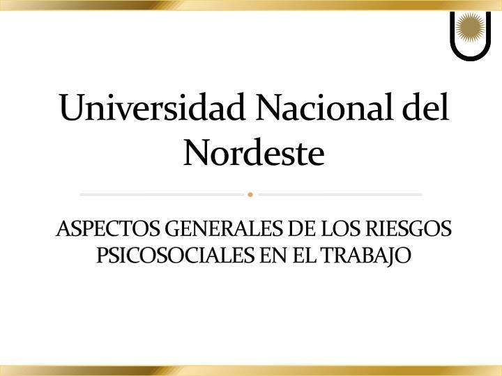 Universidad nacional del nordeste aspectos generales de los riesgos psicosociales en el trabajo
