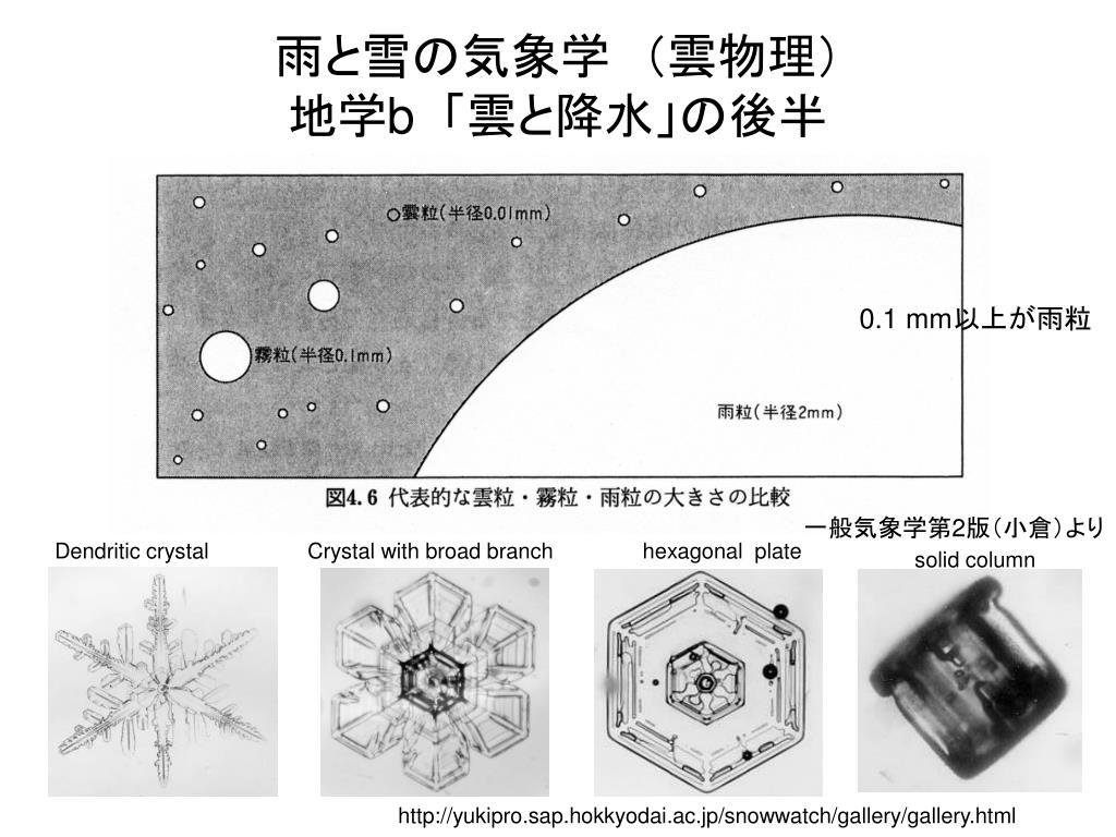 PPT - 雨と雪の気象学 (雲物理...