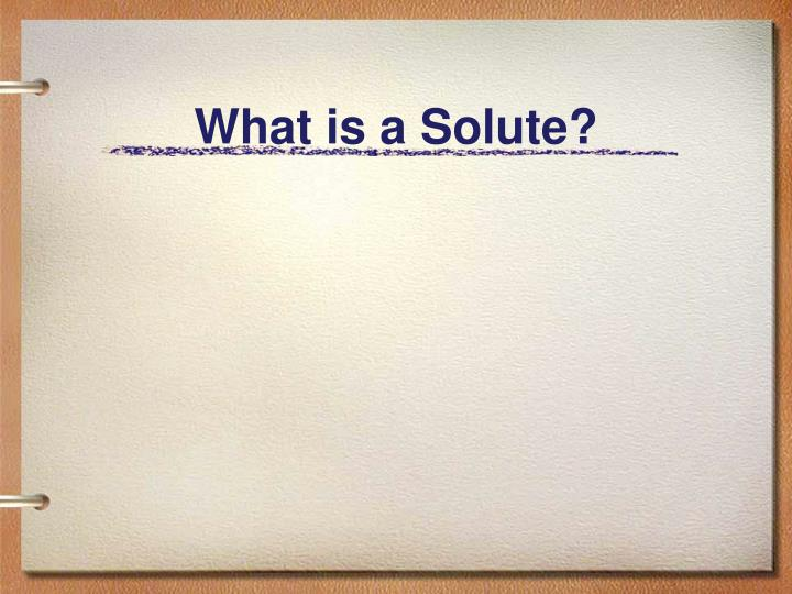 what is a solute n.