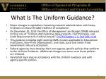 what is the uniform guidance