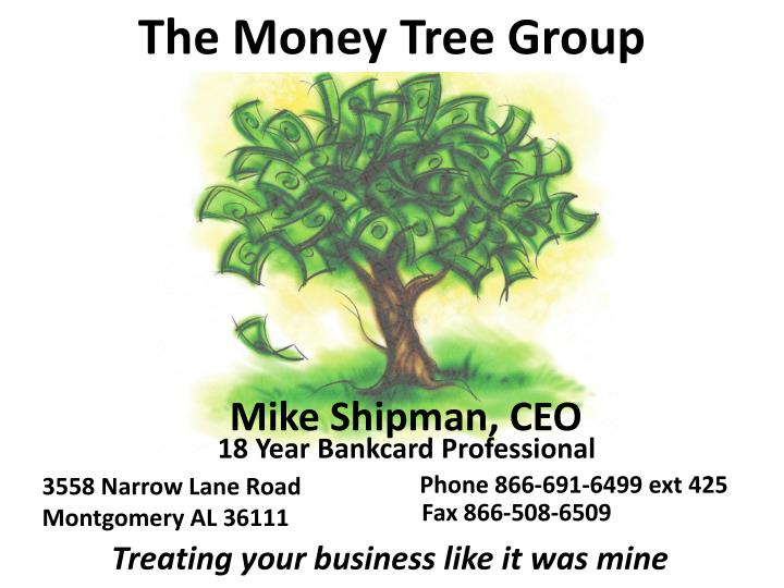the money tree group n.