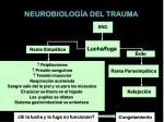neurobiolog a del trauma