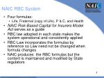 naic rbc system