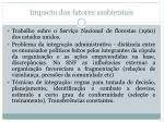 impacto dos fatores ambientais