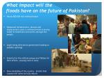 what impact will the floods have on the future of pakistan