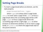 setting page breaks
