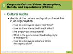 corporate culture values assumptions beliefs and expectations vabes