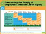 forecasting the supply of employees internal labor supply1