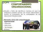 comportamiento organizacional1