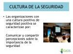 cultura de la seguridad1