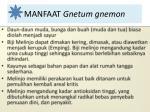 manfaat gnetum gnemon