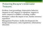 protecting biscayne s underwater treasures1