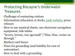 protecting biscayne s underwater treasures4