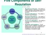 five components of self regulation baumeister vohs 2004