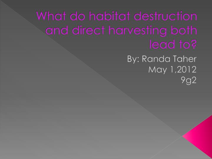 w hat do habitat destruction and direct harvesting both lead to n.