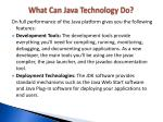 what can java technology do