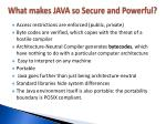 what makes java so secure and powerful