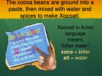 the cocoa beans are ground into a paste then mixed with water and spices to make xocoatl