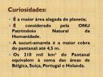 curiosidades3