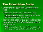 the palestinian arabs