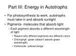 part iii energy in autotrophs1