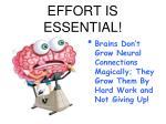 effort is essential