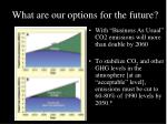 what are our options for the future