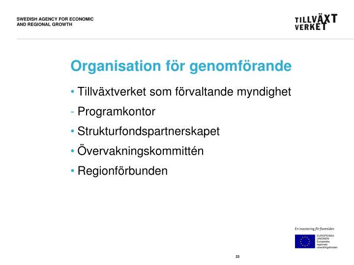 Organisation för genomförande
