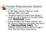 female reproductive system3