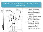 ovarian development during fetal growth