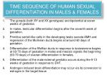 time sequence of human sexual differentiation in males females