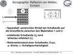 sonographie reflexion von wellen echolot1