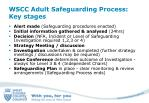 wscc adult safeguarding process key stages