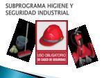 subprograma higiene y seguridad industrial