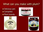 what can you make with plum