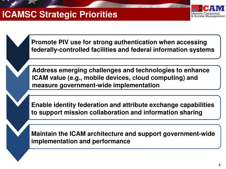ICAMSC Strategic Priorities