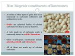 non biogenic constituents of limestones