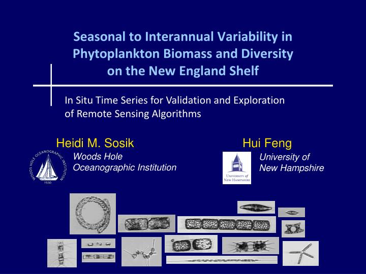 seasonal to interannual variability in phytoplankton biomass and diversity on the new england shelf n.
