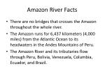 amazon river facts