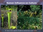 roman influence on culture2