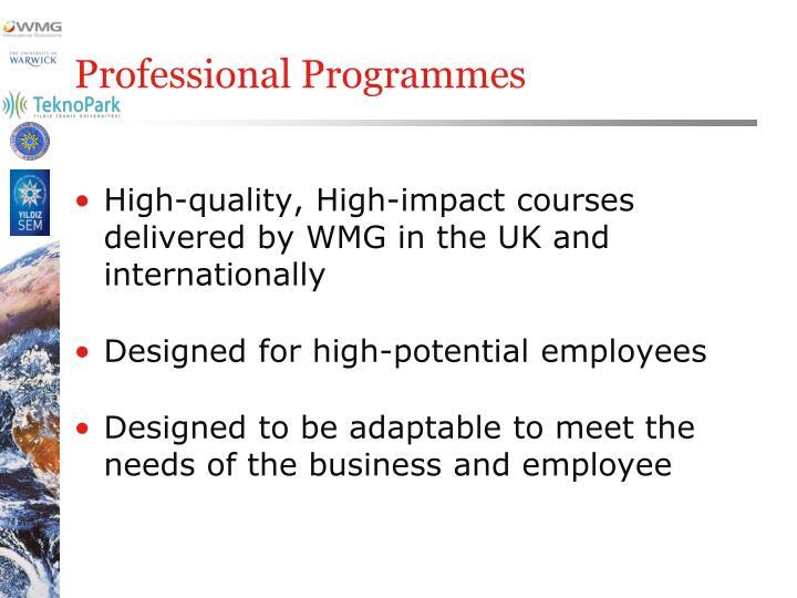 Professional programmes