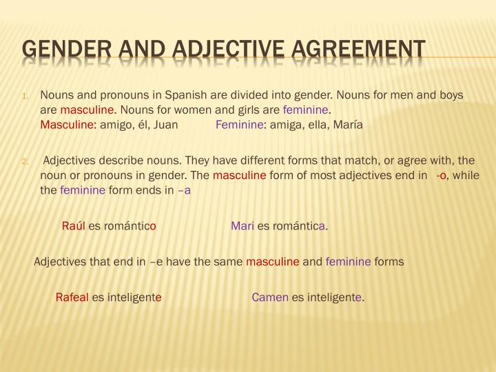 Nouns and pronouns in Spanish are divided into gender. Nouns for men and boys are