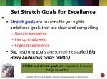 set stretch goals for excellence