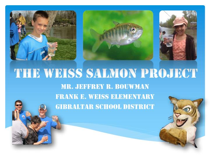 the weiss salmon project n.