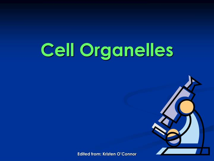 cell organelles n.