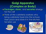 golgi apparatus complex or body