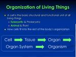 organization of living things