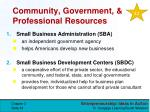 community government professional resources