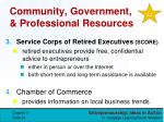 community government professional resources1