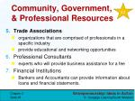 community government professional resources2